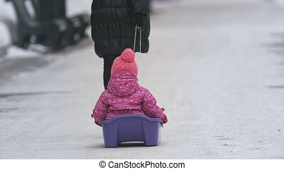 Mother pull the sled with child in the park