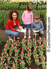 mother, son and daughter in greenhouse looking at tulips,...
