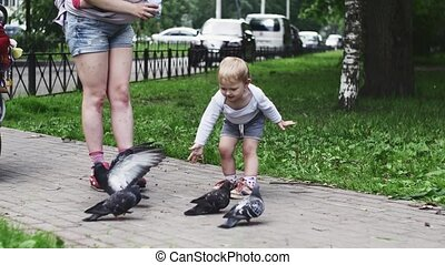 Mother with baby on sling son feeding doves by sunflower...