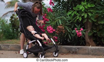 Mother with child in stroller running and enjoying...
