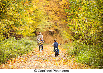 Mother with little sons cycling in autumn park. - Beautiful...