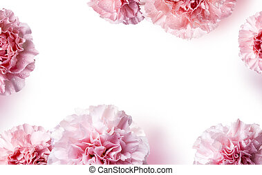 Mother's day concept of pink carnation flowers background with copy space