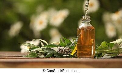 motherwort, essentiële olie, in, mooi, fles, op, tafel