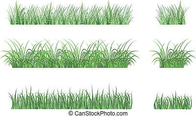 motifs, herbe, vert
