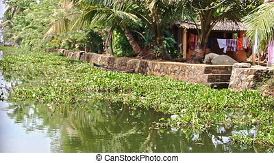 Motion along River Bank with Houses behind Palms in Tropics...