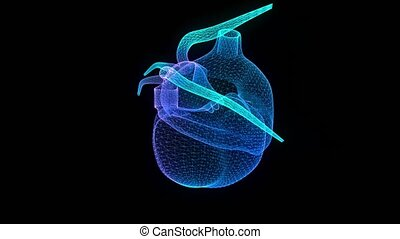 Motion animation of human heart. Digital technology visualization of 3d. Virtual Model, Seamless loop 4k animation.
