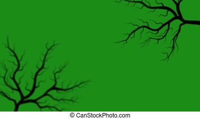 Motion graphics the appearance of tree branches on a green background