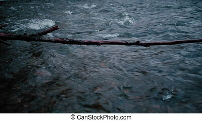 Motion of the river against the background of a thin branch....