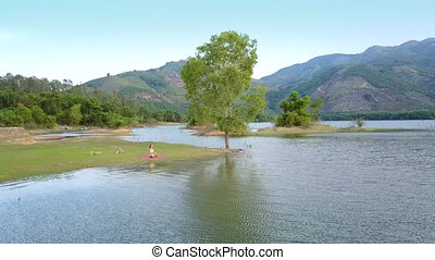 motion to lady sitting at tree on lake bank