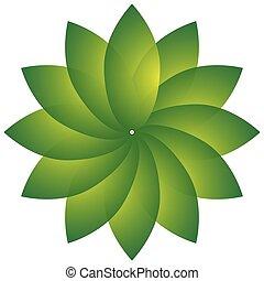 motivo, naturaleza, forma., natural, ambiente, hoja, concepts., circular