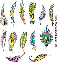 Motley feathers - Miscellaneous motley feathers. Set of ...