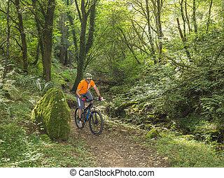 motociclista de montaña, equitación, senderos, en, gales