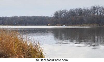 Motor boat floats on autumn lake - Motor boat floats on the...