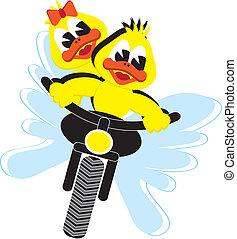 motor ducks - motor duck couple riding on a motor bike