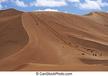 Motorbiking in the desert