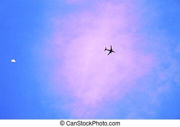 motorflugzeug, in, der, blauer himmel, und, rosa, wolke