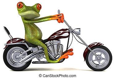 motorrad, -, frosch, abbildung, spaß, 3d