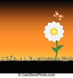 motyl, kwiat, wektor, ilustracja