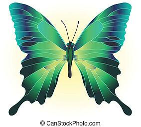motyl, zielony, piękny