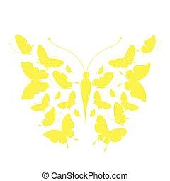 motyle, projektować