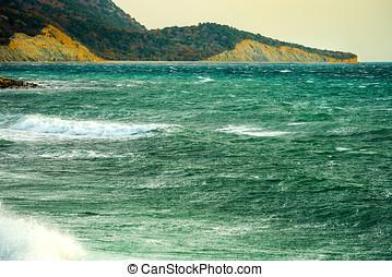 motyw morski, surfer