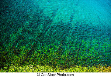 motyw morski