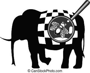 mouche, éléphant