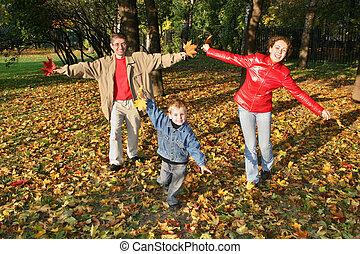 mouche, automne, parc, famille
