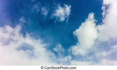 mouche, bleu, sky., ensoleillé, avion, jour