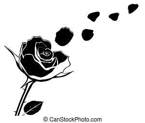 mouche, fleur, silhouette, illustr, pétales rose, vecteur, ...