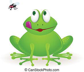 mouche, grenouille