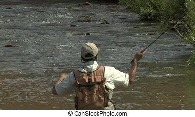 mouche, lent, coup, mouvement, serré, pêcheur, balancez ...