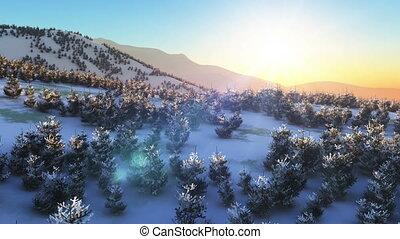 mouche, montagne, coucher soleil, hiver, 4k