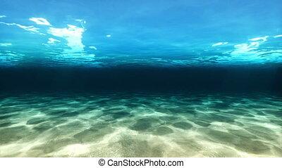 mouche, sous-marin, sur, came, mer