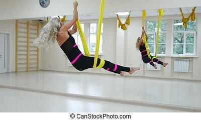 mouche, yoga, pilates, yoga, fortifiant, gym., gymnastique, ...