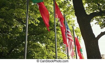 mouches, autour de, states., différent, countries., unité, appareil photo, drapeaux