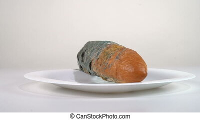 Mouldy white bread in a plate rotates in front of the camera