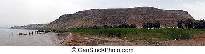 Kinneret lake