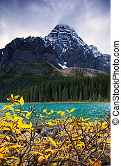 Mount Chephren and Chephren Lake in Banff National Park,...