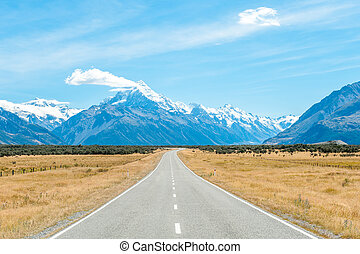 Mount Cook, NZ - Mackenzie country and Mount Cook, South...