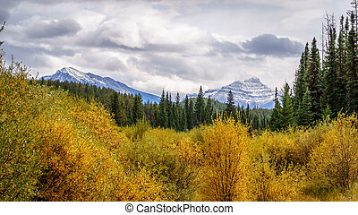 Mount Edith Cavell and Verdant Peak