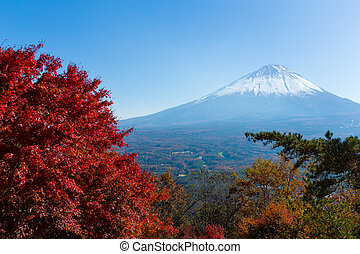Mount Fuji and maple tree
