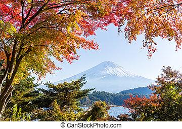Mount Fuji in Autumn season