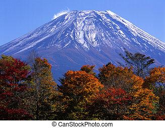 Mount Fuji in Fall VII