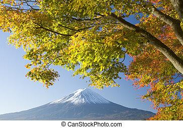 Mount Fuji in Fall X