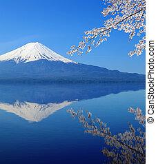 Mount Fuji with water reflection, view from Lake Kawaguchiko