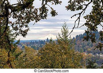Mount Hood from Willamette Falls Overlook