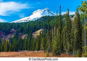Mount Hood in Oregon - Snowy Peak of Mount Hood in the...