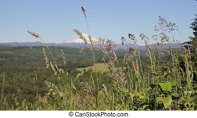 Mount Hood in Sandy Oregon 1080p