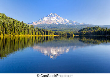 Mount Hood on a Sunny Day